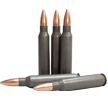 223 rem fmj 55 grain ammunition